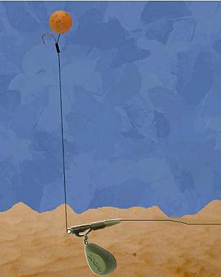 Файл:Зиг риг с фиксированной длинной.jpg - FishingWiki