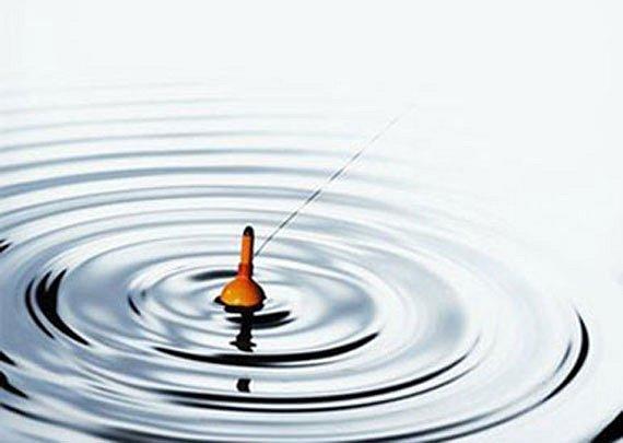 сонник поплавок клюет
