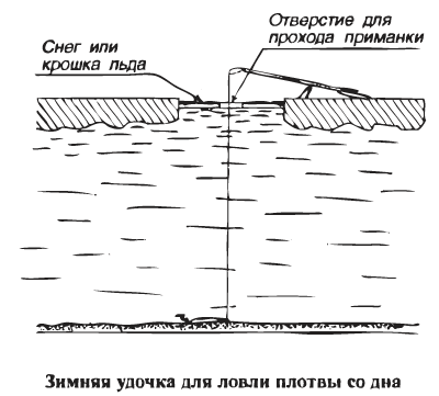 Зимняя удочка для ловли плотвы.png