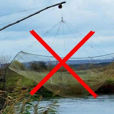 запрет на ловлю 2016 воронеж