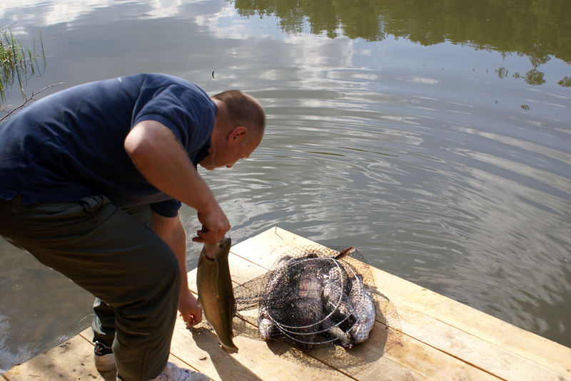 разрешенные места ловли рыбы в луганской области