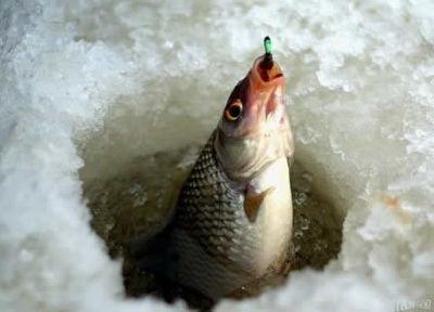 ловится ли рыба после дождя