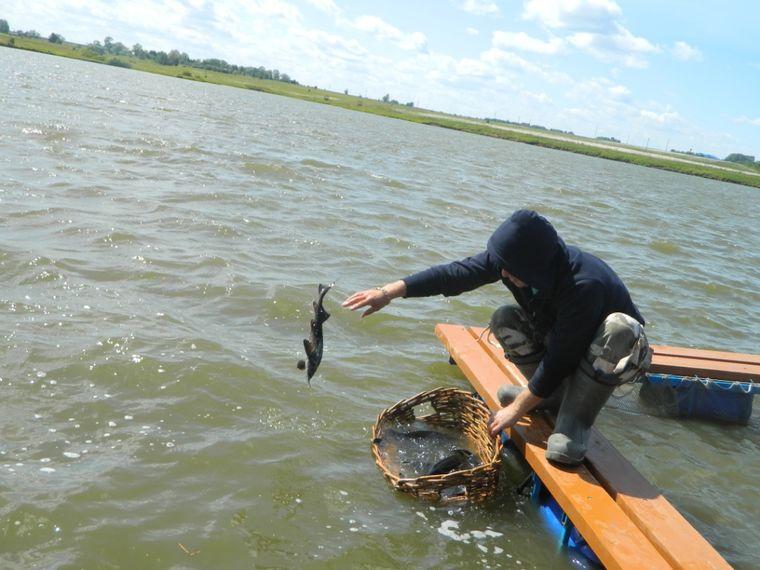 рыболовная чувашия