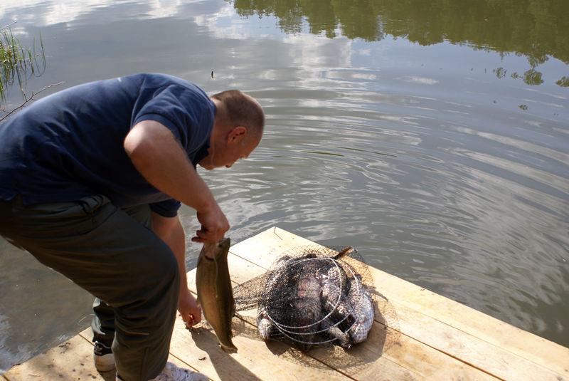 рыбалка на что можно ловить