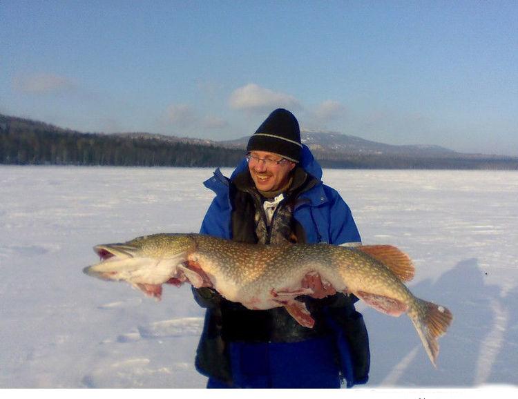 Рыбалка в чебаркульском районе челябинской области